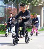 triciclo elettrico 400W con 36V 11ah