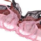 Комплект нижнего белья бюстгальтера Panty женщин оптовой новой конструкции Breathable стильный