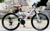 고품질 26 인치 성숙한 자전거 /Mountain 자전거