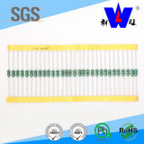 Wirewound Vaste & Conforme Inductor met ISO9001