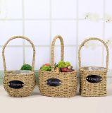(BC-SF1018) Eco-Friendly Handmade естественная корзина цветка сторновки