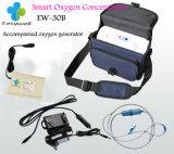 Inhaleertoestel van de Zuurstof van de Concentrator van de Zuurstof van 100% het Draagbare 3L voor Dagelijkse Zorg ew-30b met 12 van de Garantie van de Tijd van de Plaatsende Maanden Maker van de Zuurstof