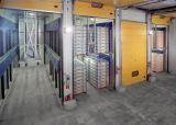 Plátano que madura el refrigerador del sitio de conservación en cámara frigorífica con la unidad de condensación de Bitzer