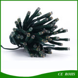 Christmas Party 정원을%s 방수 Solar Power 100LED String Lights
