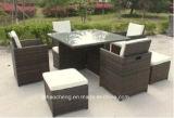 屋外の藤の庭の家具セットおよびテラスの家具