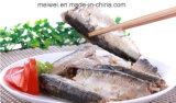 Peixes enlatados de venda quentes da sardinha no petróleo vegetal
