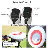 Ce&RoHSの3つの車輪の電気スクーター