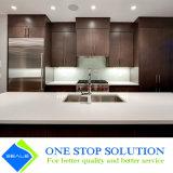 Новая отделка Veneer кухонного шкафа неофициальных советников президента модульной мебели конструкции (ZY 1089)