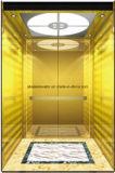 De Gouden Spiegel die van de Lift van de Lift van de passagier hl-x-054 etsen