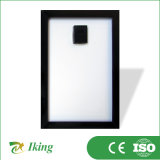 Panel solare Factory Poly Solar Panel con Competitive Price