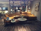 Modello domestico 426 del sofà del cuoio del Recliner della mobilia