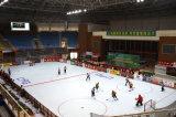 Blockierender Plastikbodenbelag-modulare, Eisbahn-Fußboden-Fliese für im Freien und Innen (Hockey-Champion/Fachmann)