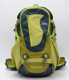 Form Colourful Travel Backpack für School, Laptop, Hiking, Travel (1616A)