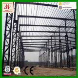 Großes Platz-Stahlkonstruktion-Lager