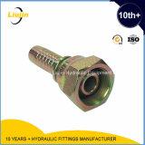 Guarniciones de manguera hidráulicas femeninas de Bsp (22612)