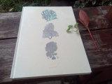 A4/A5/A6 personnalisé Hardcover Notebooks sur Promotion (XLJA480-X03)