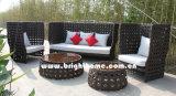 Rota de aluminio del PE del ocio que teje los muebles al aire libre Bg-808