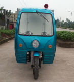Hot Sell Reverse Trike / 3 Wheel Cargo Motorcycle