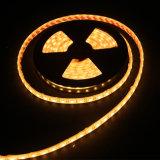 배 Decoratoin를 위한 IP68 LED 지구 빛