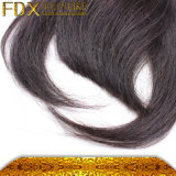 バージンのブラジルの毛の強打の100%年の毛の人間の毛髪