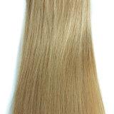 최신 판매 머리 연장에 있는 인도 Remy 머리 Virgin 사람의 모발 클립