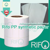 Papier synthétique d'impression offset flexible de bonne qualité de Rifo avec RoHS