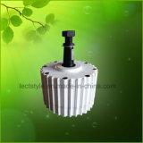 1000W Pmg 24V/48V Dauermagnetgenerator