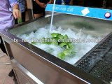 Água que conserva a máquina de lavar comercial da arruela da fruta e verdura da carne