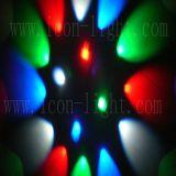 Nieuw Heet LEIDEN RGBW van de Verkoop 16X3w PARI voor de LEIDENE Verlichting van het Stadium