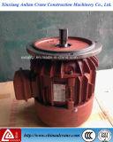 Motor corriente del alzamiento trifásico eléctrico de Zdy