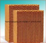 La volaille renferment la garniture de refroidissement de nid d'abeilles évaporatif de rideau pour la garniture de miel de serre chaude de Chambres de ferme avicole pour le refroidisseur
