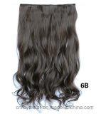 Non-Tracer la femelle cinq de perruque coupent un clip de cheveu bouclé de puce dans des extensions de cheveu