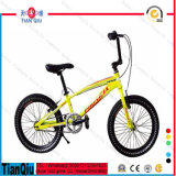 2016 grasso Tire Bike Bicycle Snow Bike da vendere