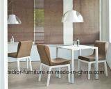 (BR-1004) Moderne het Dineren van het Restaurant van het Hotel Houten het Dineren van het Meubilair Stoel