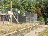 Niedriger Preis galvanisierte geschweißten galvanisierten geschweißten Maschendraht des Drahts mesh/3X3