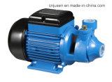 고품질 220W 플라스틱 와동 수도 펌프