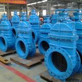 BS5163 Ductile Iron Gate Valve con Epoxy Coating