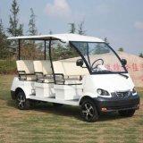 Il CE approva l'automobile facente un giro turistico della città elettrica delle 8 sedi (DN-8)