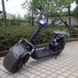 Fait dans les cocos électriques de ville de scooter de gros pneu de la Chine 1000W (JY-ES005)