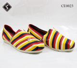 Ботинки способа вскользь гуляя для женщин & ботинок холстины
