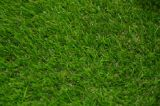 als Landscape Highquality Synthetic Grass Artificial Grass