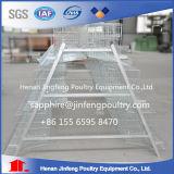 Matériel de ferme de cage de poulet de ponte d'oeufs à vendre