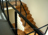 316 inferriata del cavo dell'acciaio inossidabile/cavi superiori esterni Balustarde per il terrazzo