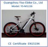 2016 شعبيّة [250و] [36ف] درّاجة كهربائيّة لأنّ سوق [إيوروبن] مع وسط إدارة وحدة دفع