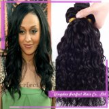 Natural Wave Remy Human Virgin Brazilian Hair Weft