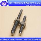 Qualitäts-nichtstandardisierte Schrauben-spezielle Schrauben-Edelstahl-Schraube