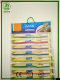 PVC+PVC hängende Verpackungs-Zahnbürste