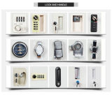 Тип хранения z мебели металла - локер 2 дверей