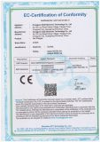 Type banque de début de saut de certification de FCC RoHS de la CE de puissance de démarreur de saut