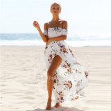 Девушка цветка Dresss способа лета женщин платья пляжа длинняя